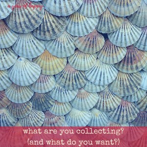 What are You Collecting? (and What Do You Want?)