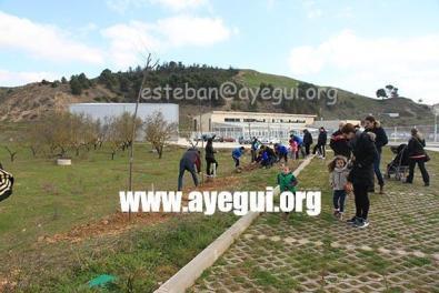 Dia_arbol_2016-Galerias-Ayuntamiento-de-Ayegui (19)