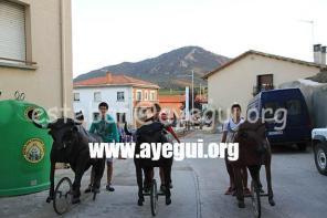 Fiestas_2015-Domingo_Dia_Abadejada-Galerias-Ayuntamiento-de-Ayegui (33)