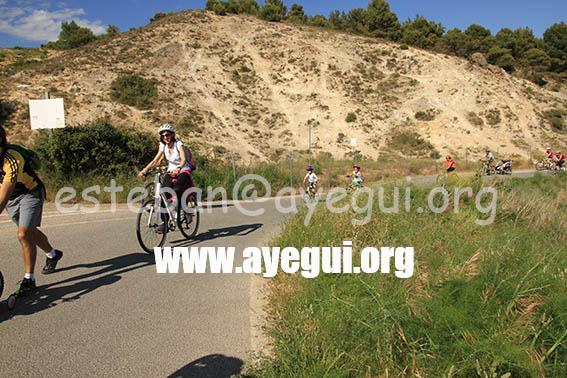 dia_bicicleta_2015-Galerias-Ayuntamiento-de-Ayegui (125)
