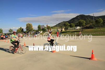 dia_bicicleta_2015-Galerias-Ayuntamiento-de-Ayegui (205)