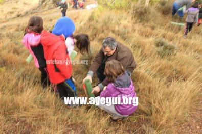 dia_del_arbol_2015-Galerias-Ayuntamiento-de-Ayegui (2)