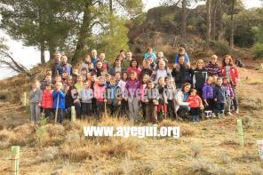 dia_del_arbol_2015-Galerias-Ayuntamiento-de-Ayegui (28)