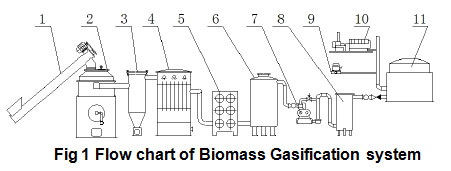 Biomass Gasification Plant for Gas Supplying or Power System