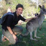 avustralya-kanguru