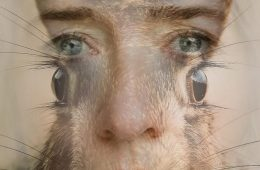 A mans face merged with the face of a rabbit