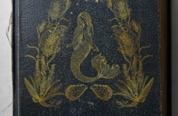 The cover of an old book. Illustrated on the cover is a mermaid.