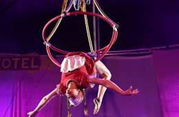 A circus acrobat handing upside down from a ring.
