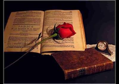 Métrica y poesía