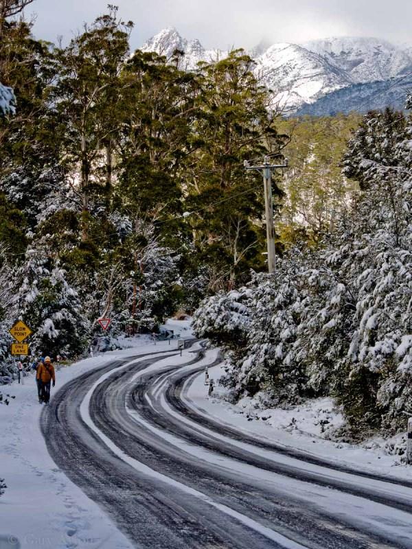 Cradle Mountain region in the snow