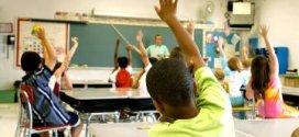 Formación y educación, ¿existen diferencias?