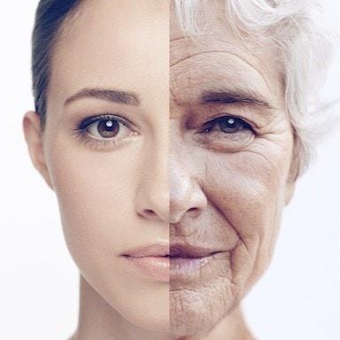 Risultato immagini per ageing