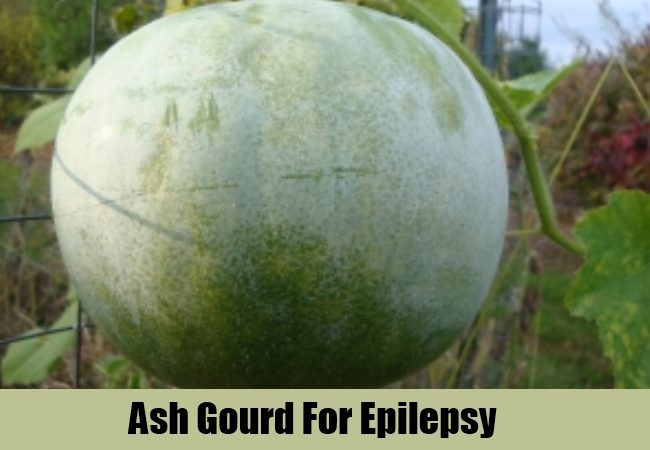 Cure Epilepsy Naturally