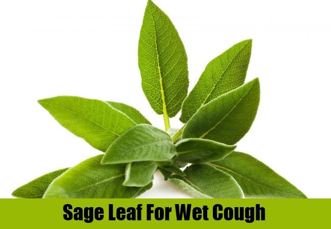 Sage Leaf For Wet Cough