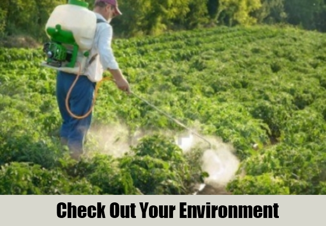 Check Out Your Environment