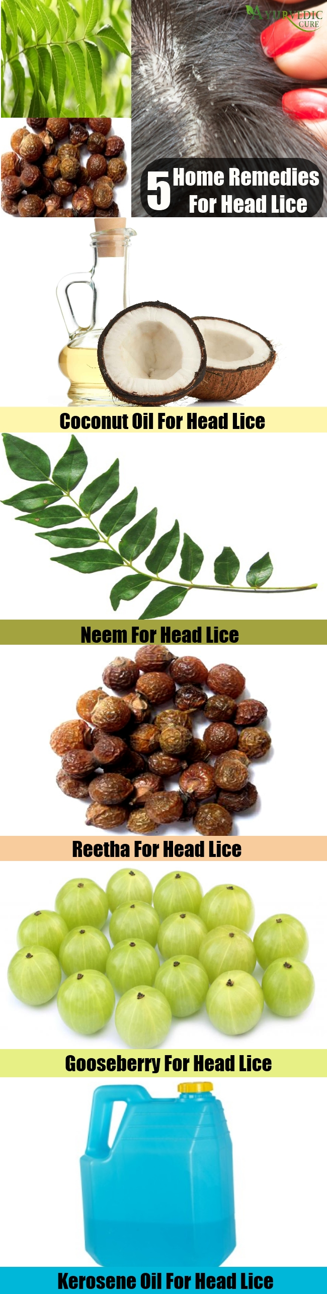 Excellent Home Remedies For Head Lice