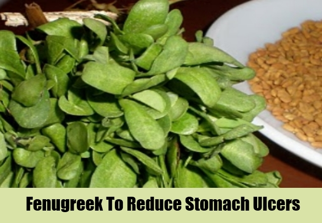 Fenugreek To Reduce Stomach Ulcers