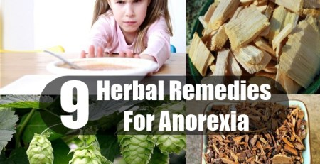 Herbal Remedies For Anorexia