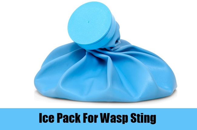 Ice Pack For Wasp Sting