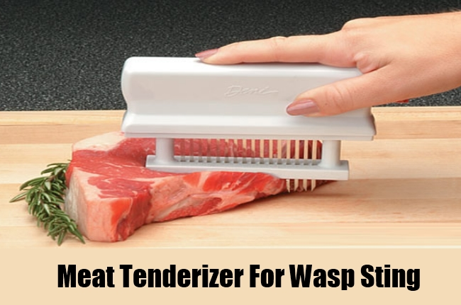 Meat Tenderizer For Wasp Sting