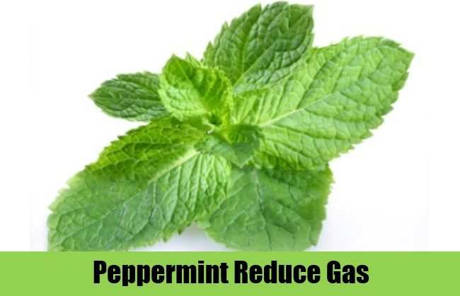 Peppermint Reduce Gas