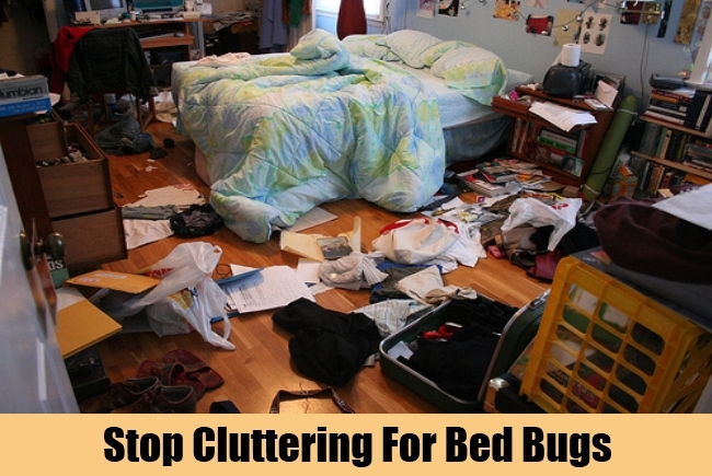 Stop Cluttering For Bed Bugs