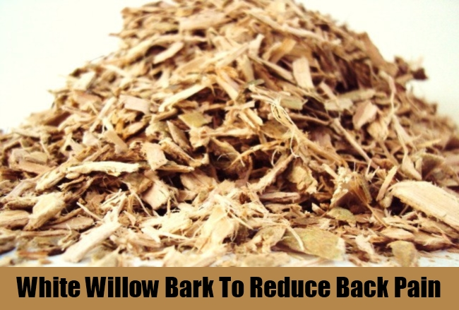 White Willow Bark To Reduce Back Pain