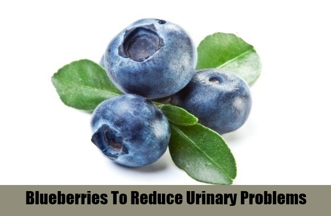 Blueberries To Reduce Urinary Problems