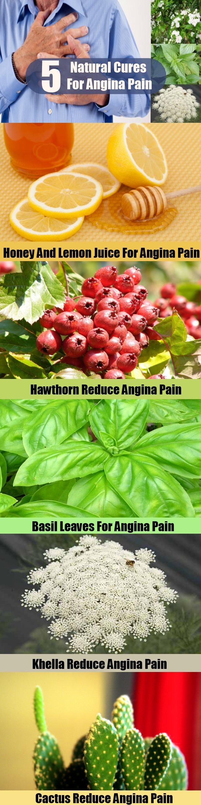 Effective Natural Cures For Angina Pain
