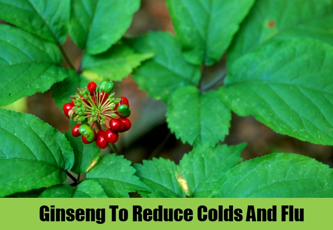 Ginseng To Reduce Colds And Flu