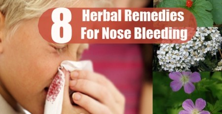 Herbal Remedies For Nose Bleeding
