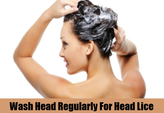 Wash Head Regularly For Head Lice