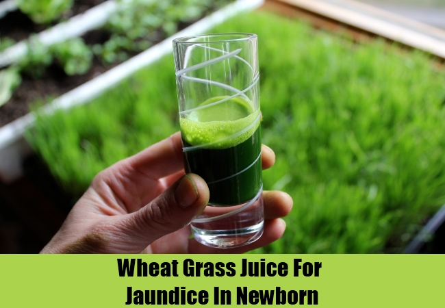 Wheat Grass Juice For Jaundice In Newborn