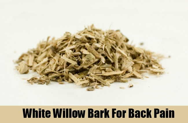 White Willow Bark For Back Pain
