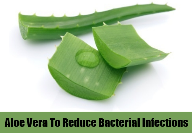 Aloe Vera To Reduce Bacterial Infections