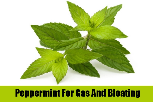 Peppermint For Gas And Bloating