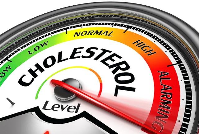 Reduces Cholesterol