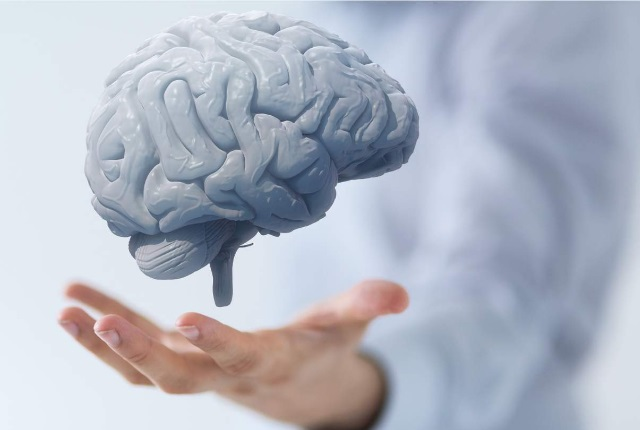 Promotes Brain Health