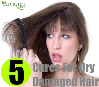 5 Cures For Dry Damaged Hair