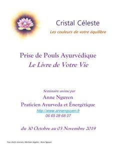 thumbnail of Prise de Pouls Ayurvedique_Anne Nguyen