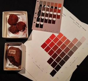 Examples of red archaeological paint cakes with Munsell color chart sheets