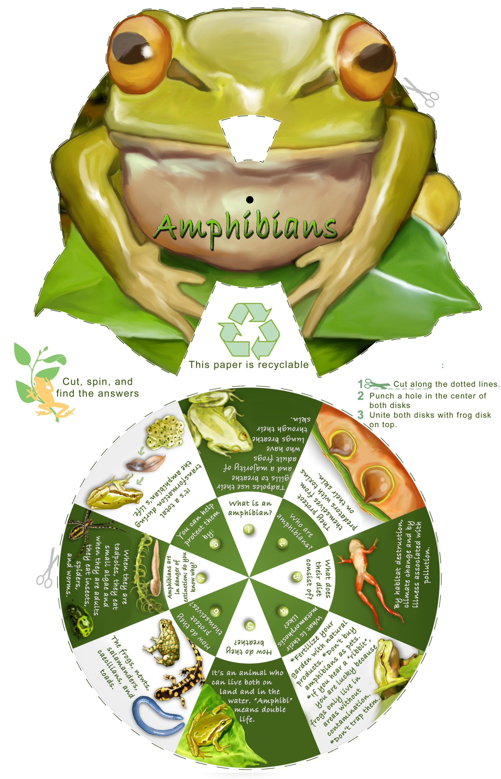 hight resolution of Amphibian Education Resources