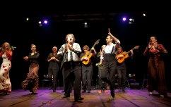azabache flamenco-004