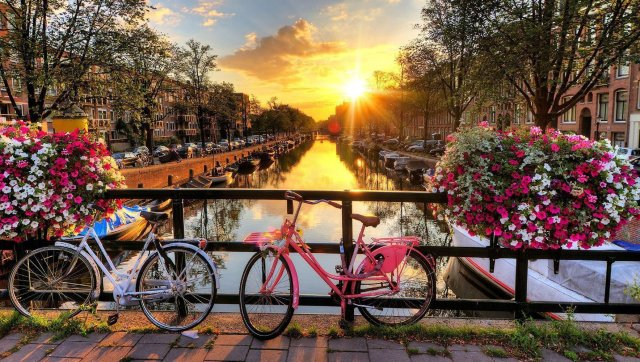Image result for Amsterdam, The Netherlands
