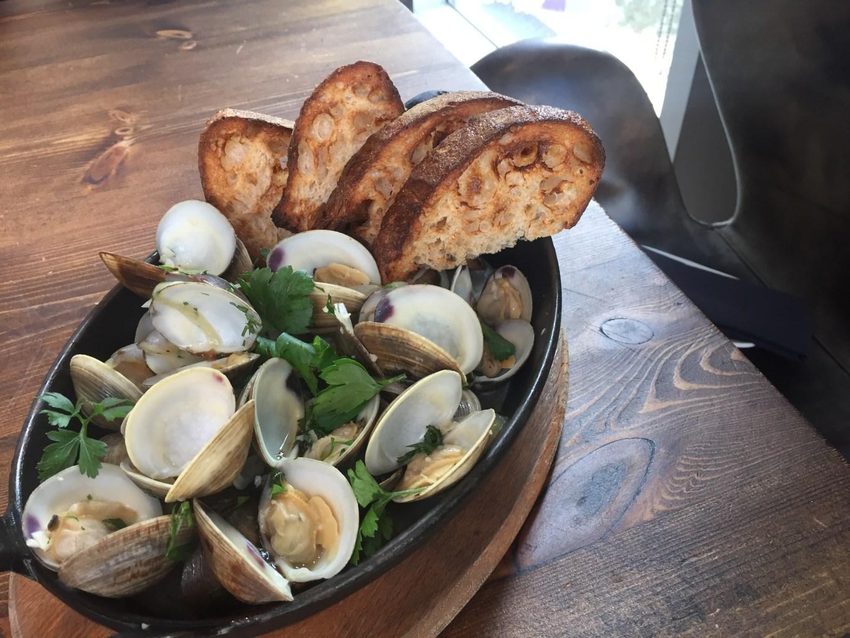 clams-5