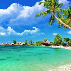 Pemandangan Pantai Cantik Dengan Tema Pokok Kelapa  Azhanco