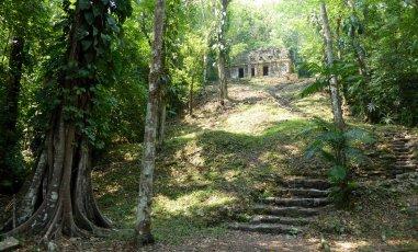 Mooi tempeltje in het bos. Yaxchilán