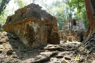 Ruïnes in het regenwoud vinden wij een goede combinatie. Yaxchilán