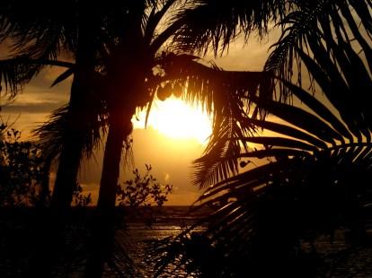 Lovely sunrise. Tobacco Caye