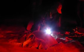 Deze ranger is de stropers (en de schildpad) te vlug af. Refugio de Vida Silvestre La Flor